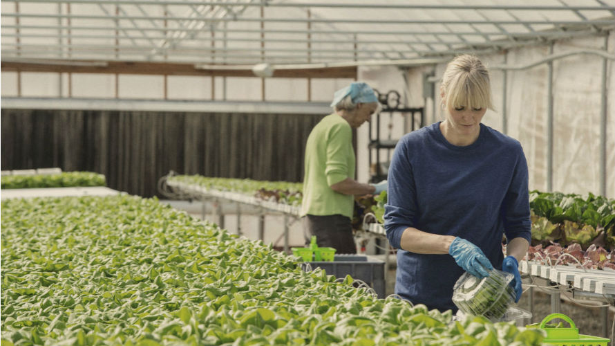 Starting_A_New_Business_Man_And_Woman_At_Greenhouse